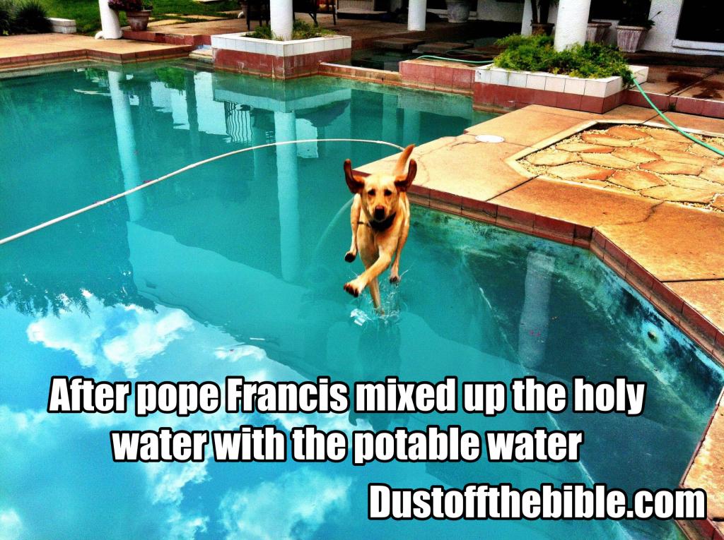 Catholic meme holy dog