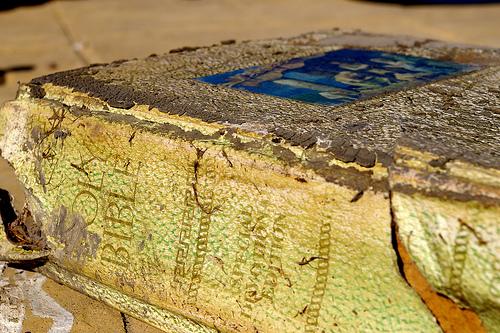 Rugged bible