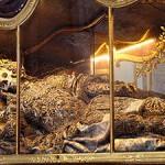 maximus at Waldsasseu Basilica