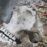 skull from leiberfest