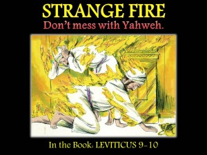 strange fire nadab and abihu