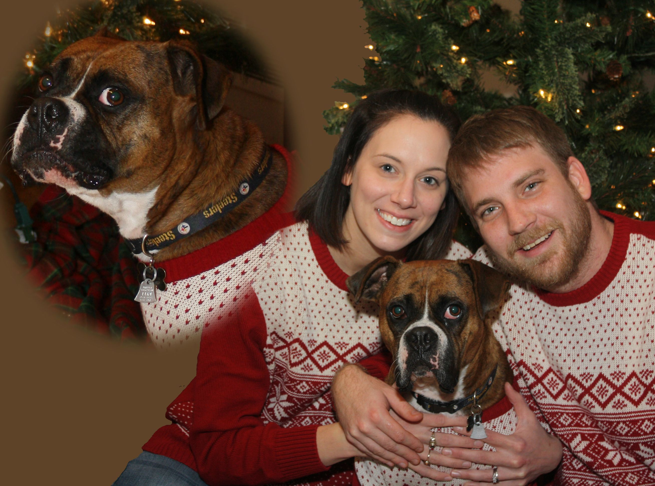 Confused Dog Family Photo
