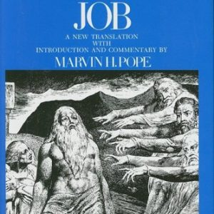 Job-The-Anchor-Yale-Bible-Commentaries-0