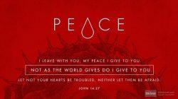 John 14.27