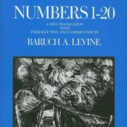 Numbers-1-20-The-Anchor-Yale-Bible-Commentaries-0