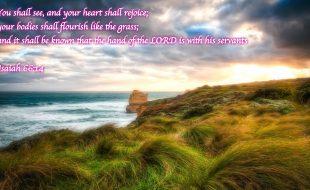 Isaiah 66:14