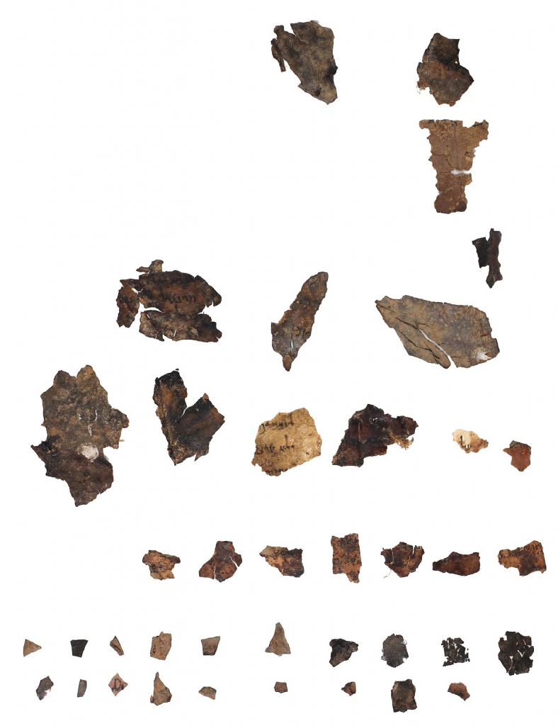 PaleoLeviticus Small Fragments