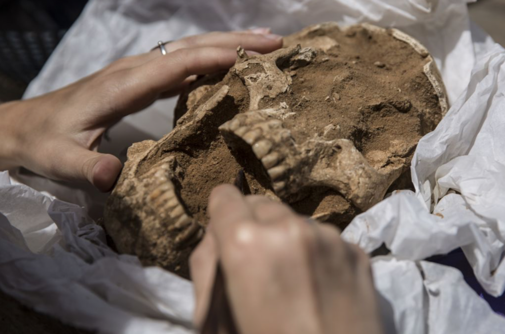 Breaking Archaeology News! – First Philistine Cemetery Ever Discovered