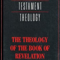 The-Theology-of-the-Book-of-Revelation-New-Testament-Theology-0