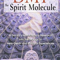 DMT-The-Spirit-Molecule-A-Doctors-Revolutionary-Research-into-the-Biology-of-Near-Death-and-Mystical-Experiences-0