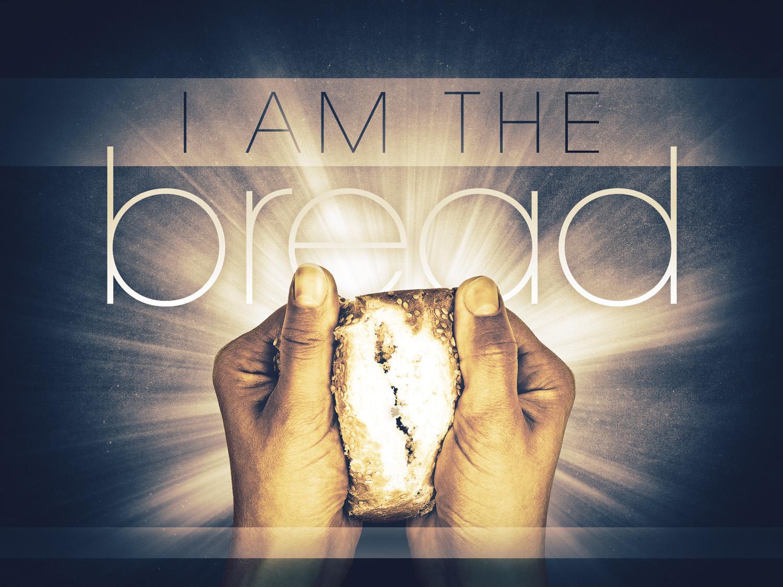 Daily Bible Reading Devotional [John 6:25-35] – September 25th, 2016