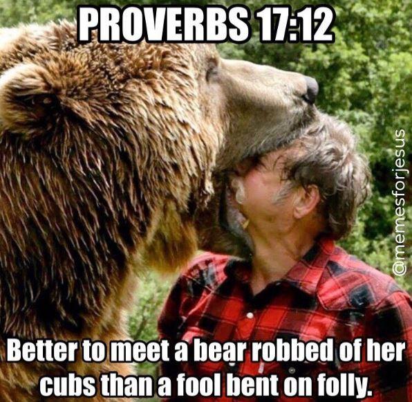 proverbs-17-12-meme
