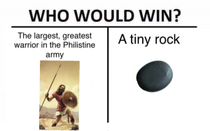 Who would win Goliath or a stone meme