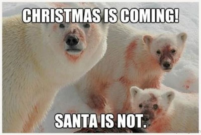 Christmas is coming, Santa is not