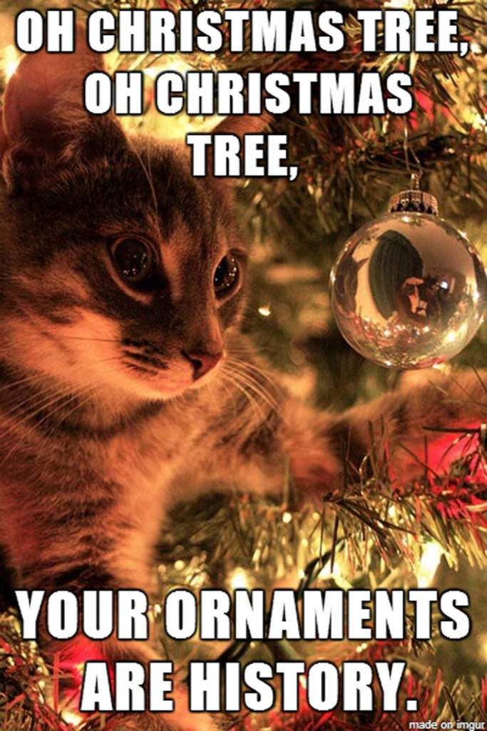 O Christmas tree your ornaments are gone meme