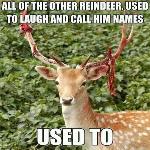 They used to call Rudolph names.... used to meme