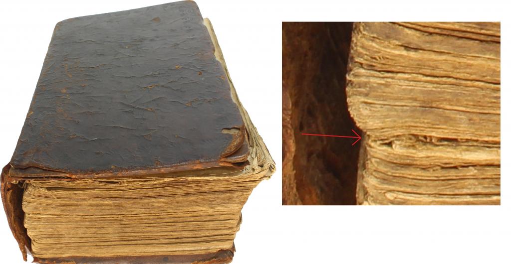 Bible Binding